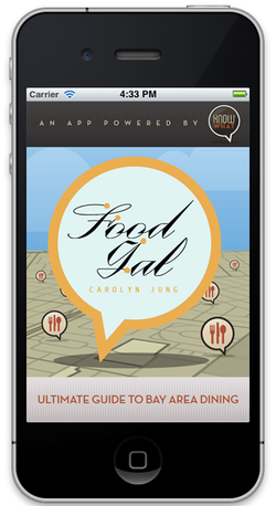 FoodGalApp-cover