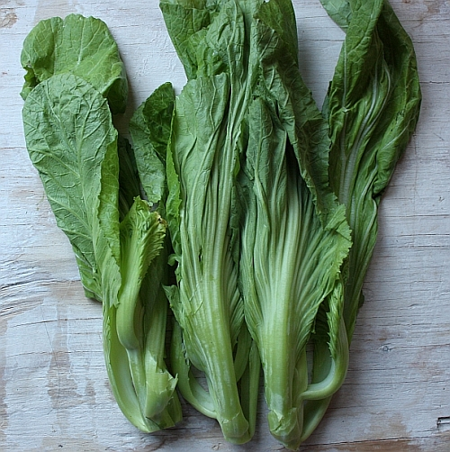 Chinese-mustard-greens-small-gai-choi