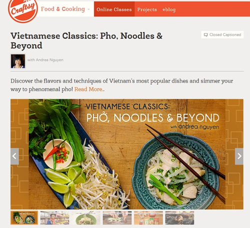 Craftsy Viet class -- click to purchase at a VWK discount
