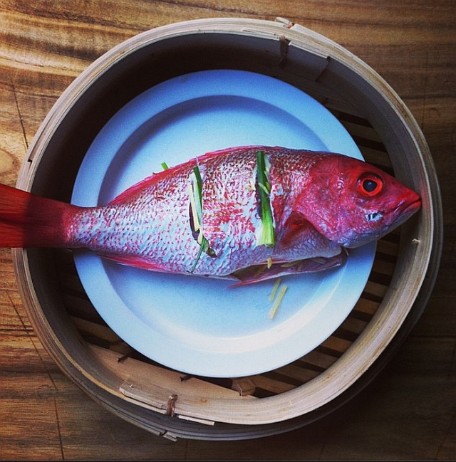 Why Japanese Fish Point To The Left