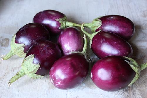 Indian-eggplant