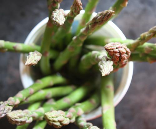 Spring-2013-asparagus