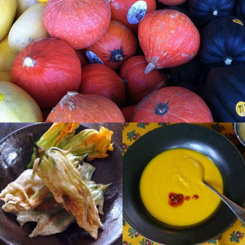 Pumpkin-squash-collage