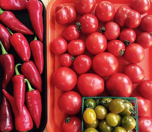 Tomato-pepper-smallish