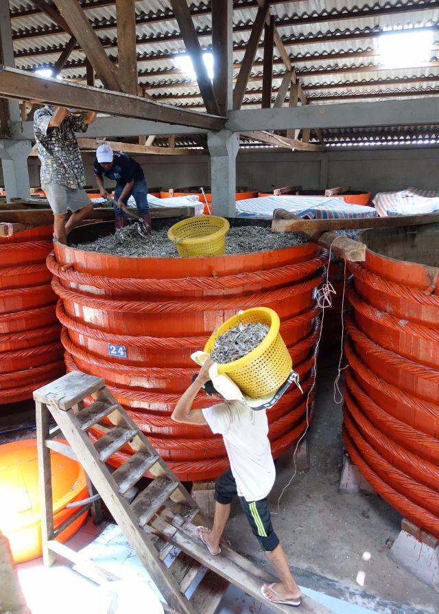 Red Boat fish sauce loading barrel