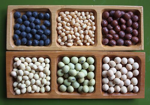Soybeans-diversity