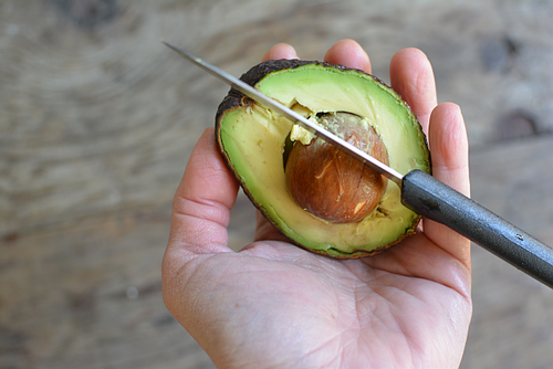 Avocado in hand pit
