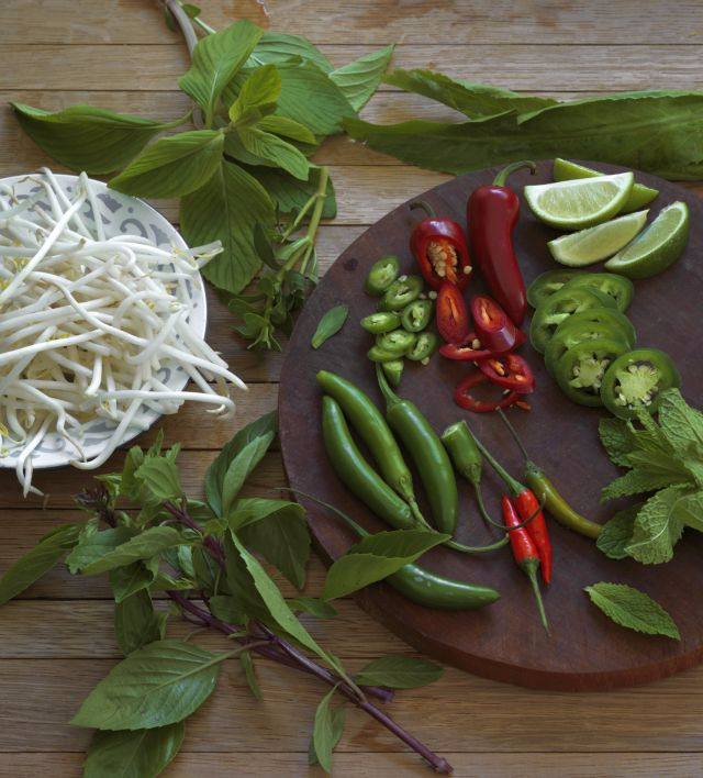GARNISH_PLATE-pho-cookbook-by-john-lee