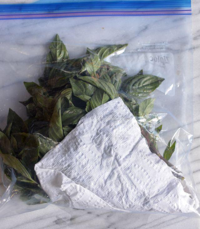 Herbs-basil