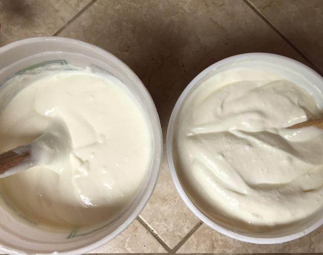 Instant-pot-yogurt-comparison